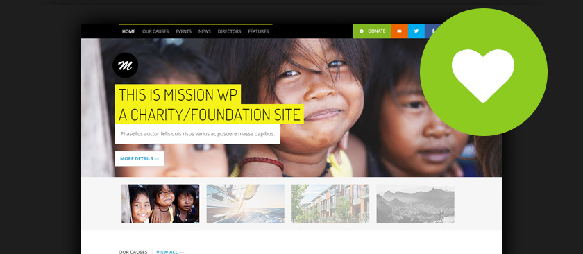 WordPress Charity Themes