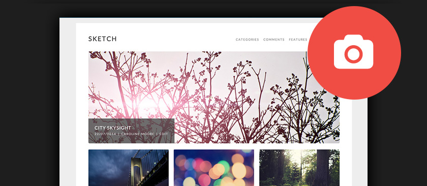 60+ Best Free WordPress Photography Themes 2017
