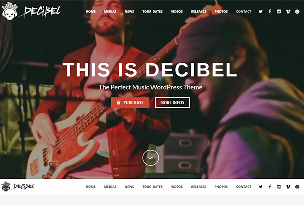 themeforest 12 Decibel