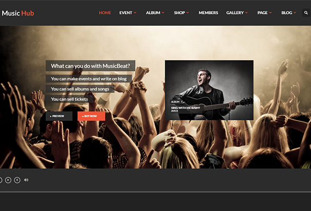 themeforest 16 MusicHub