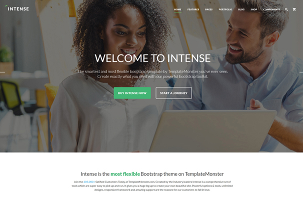 intense-multipurpose-website-template