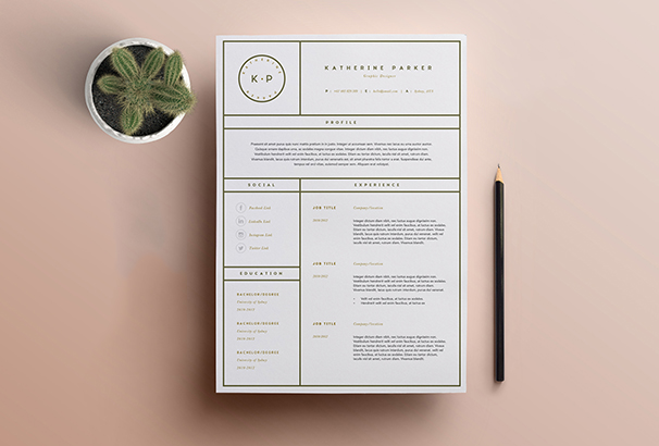 resume-template-3-page-cv-template