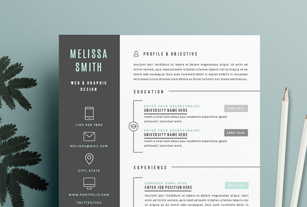 resume-template-3page-iconic